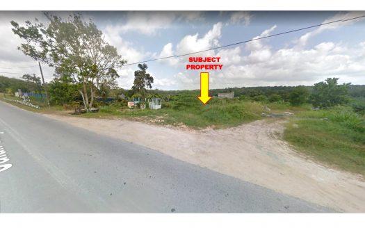 Sungai Tiram Agriculture Land for Sales